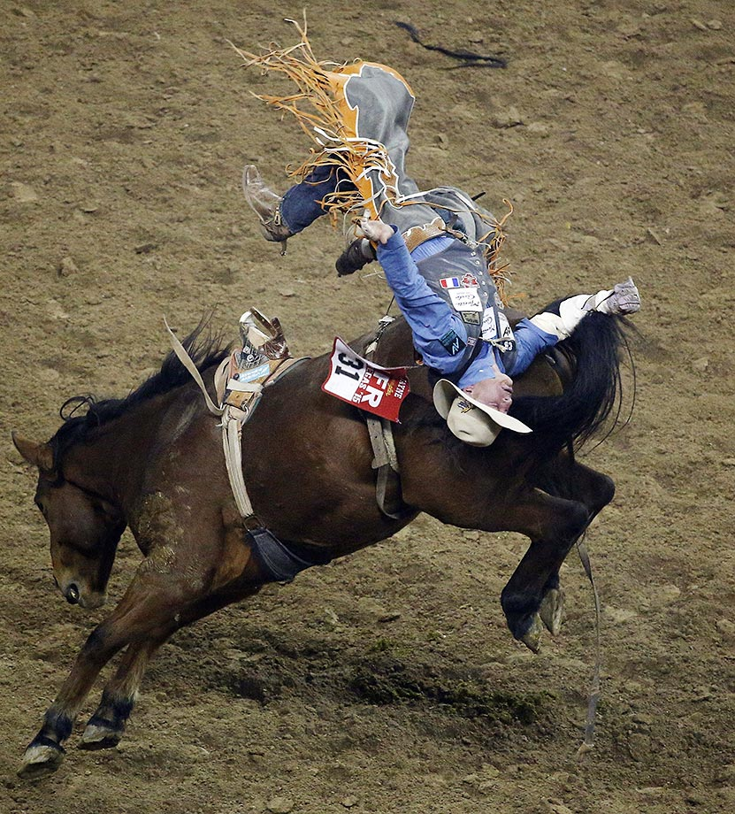 Evan Jayne gets tossed off his horse during the bareback riding event of the National Finals Rodeo in Las Vegas.