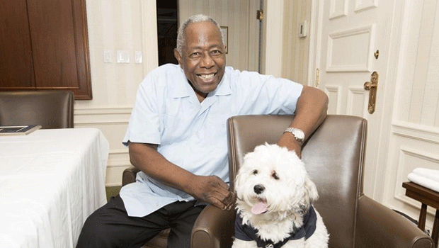 Hank Aaron and Hank the Dog :: @Brewers/Twitter