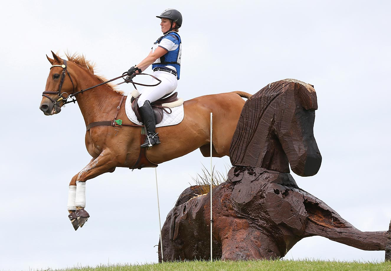 Katherine Van Tuyl riding Double J Sunshine at the Puhinui International in Auckland, New Zealand.