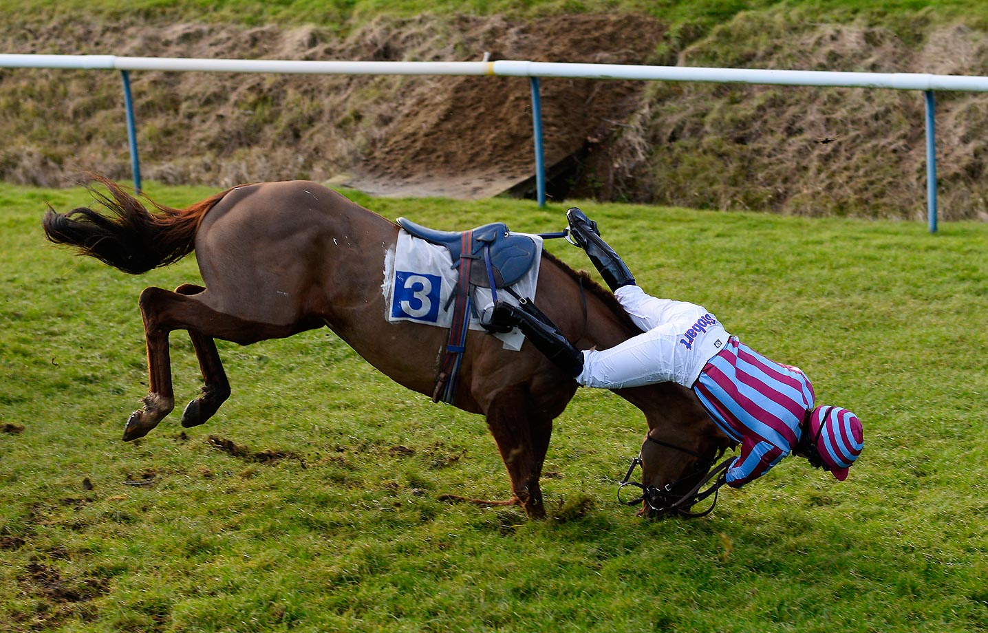 Lizzie Kelly, riding Benefique Royale, takes a tumble at the Leicester racecourse in England.