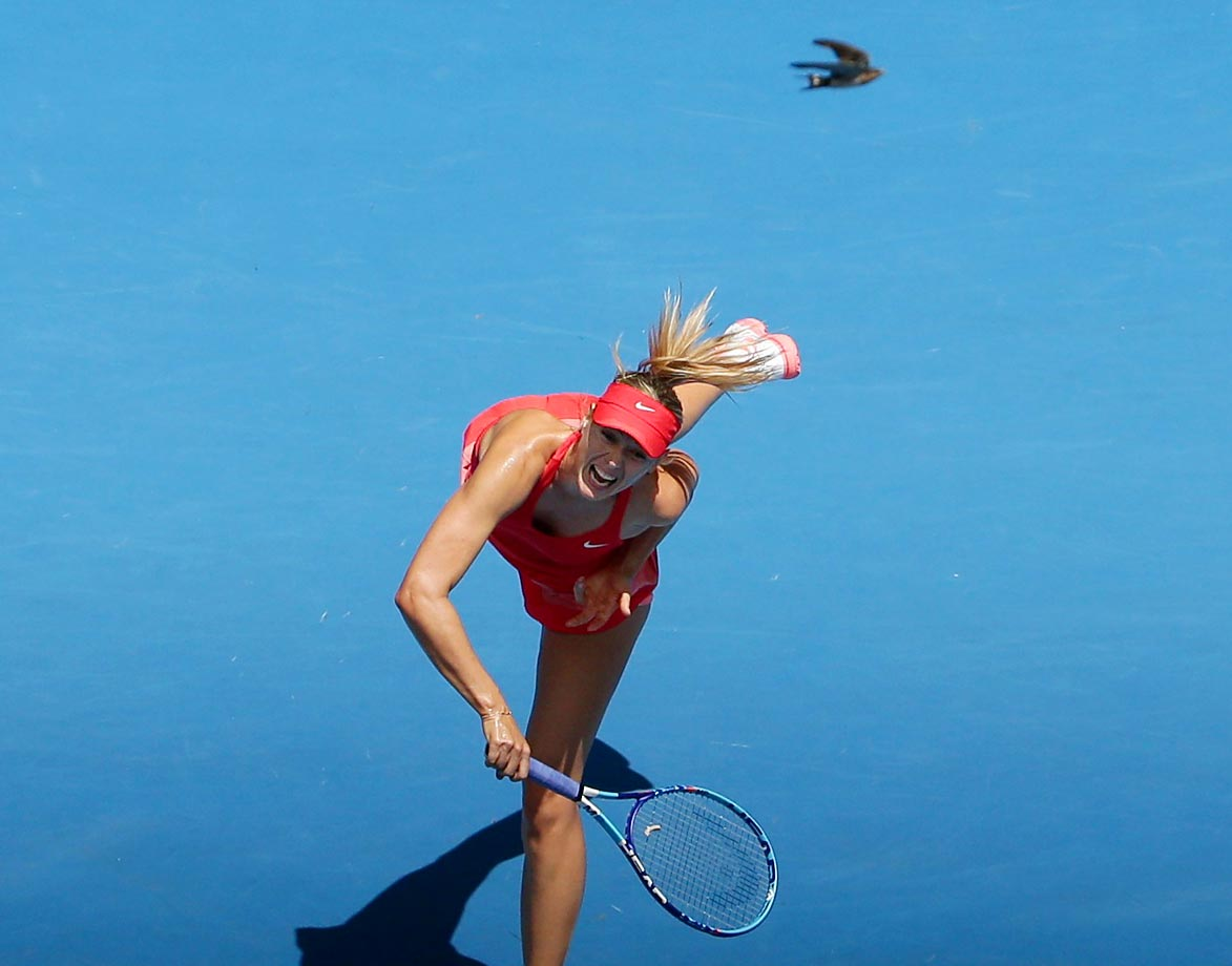 A bird flies past Maria Sharapova during her match against Ekaterina Makarova in the semifinals at the Australian Open.
