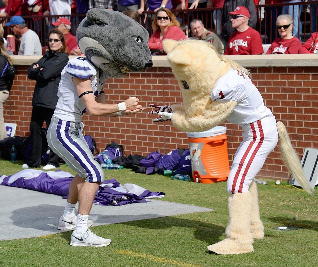 Kansas State mascot Willie the Wildcat meets Boomer of Oklahoma.