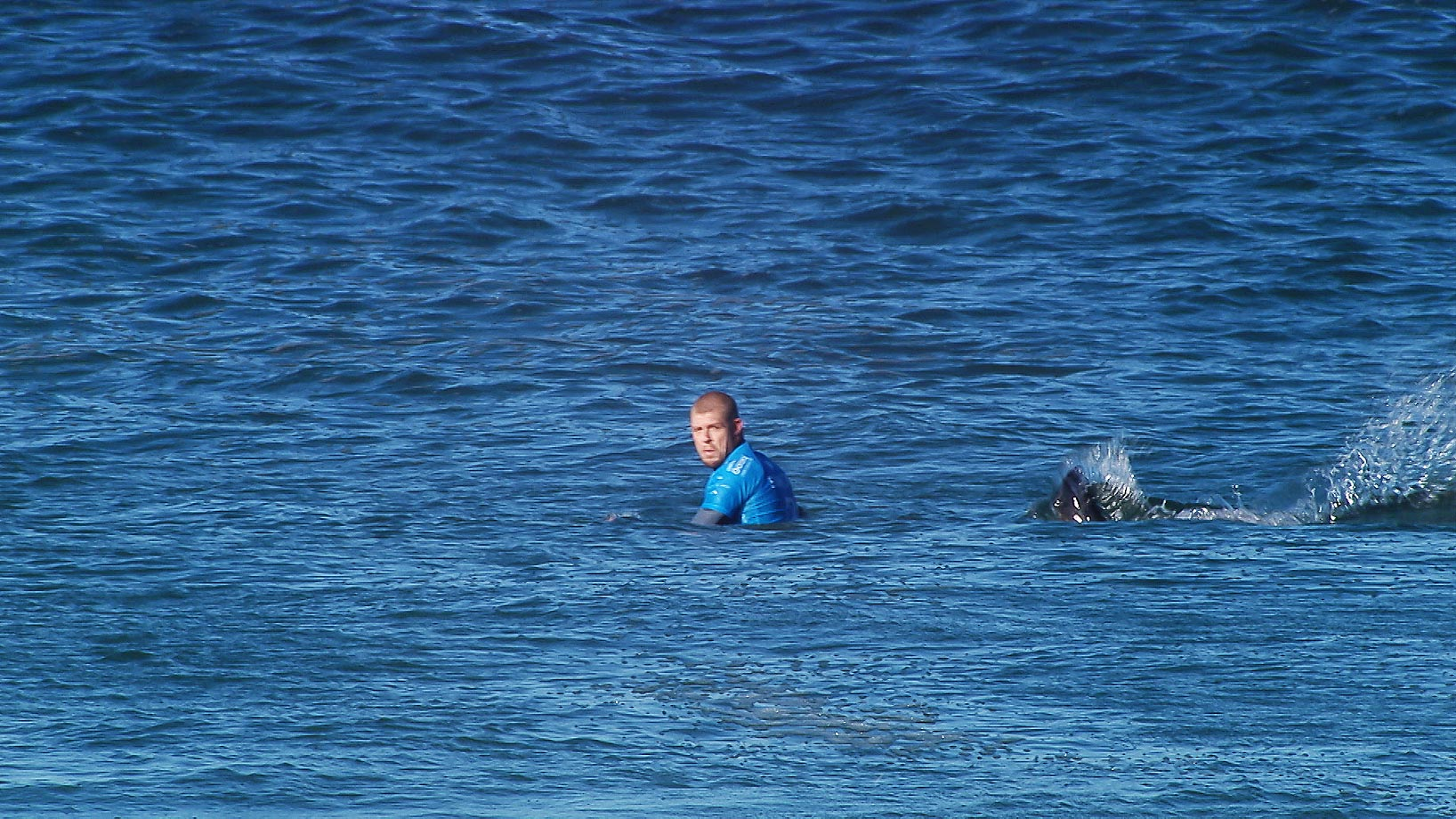 Mick Fanning of Australia was attacked by a Shark at the Jbay Open in Jeffreys Bay, South Africa.