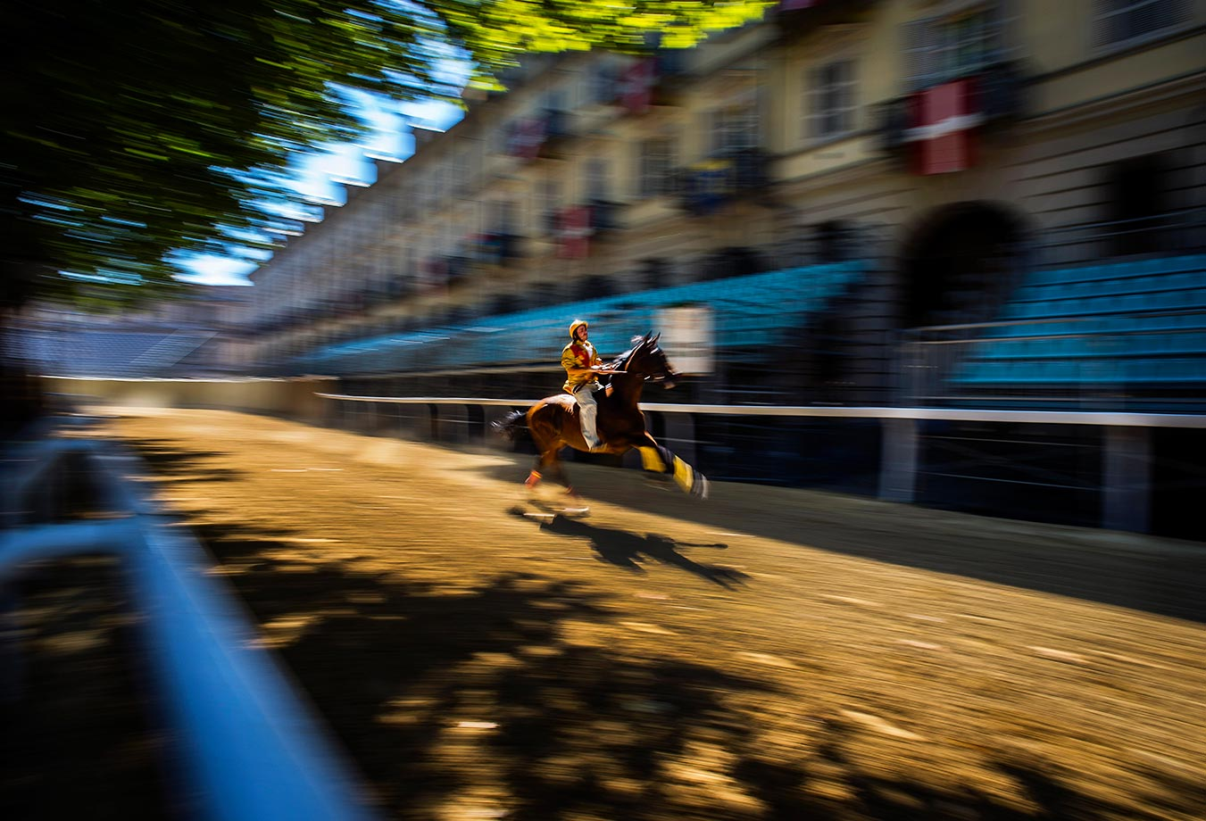 A horse warms up for the trials ahead of the Palio Di Asti in Italy.