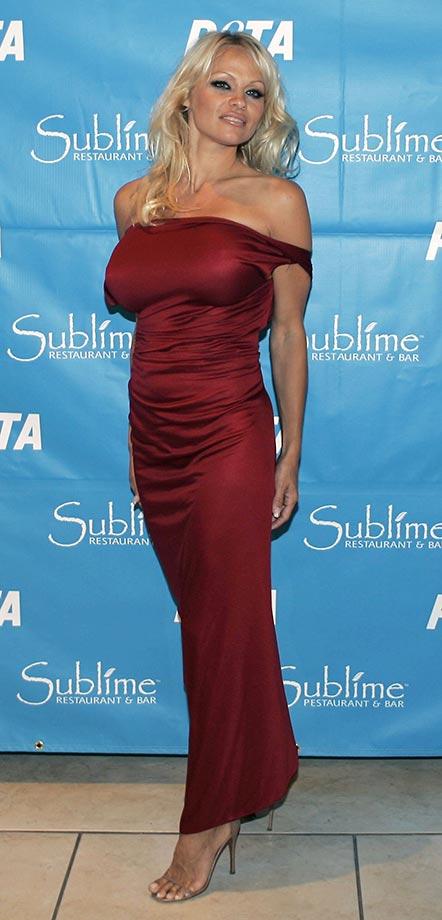Pamela Anderson ::  J. Pat Carter/AP