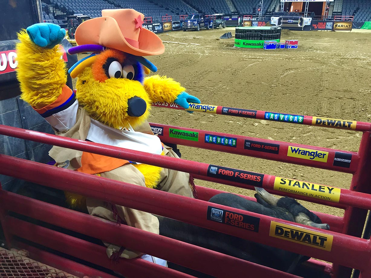The PBR was in Allentown, Pa., last weekend and MeLVin, the mascot of the Lehigh Valley Phantoms AHL hockey team, bravely sat astride a bull named MicroMan.