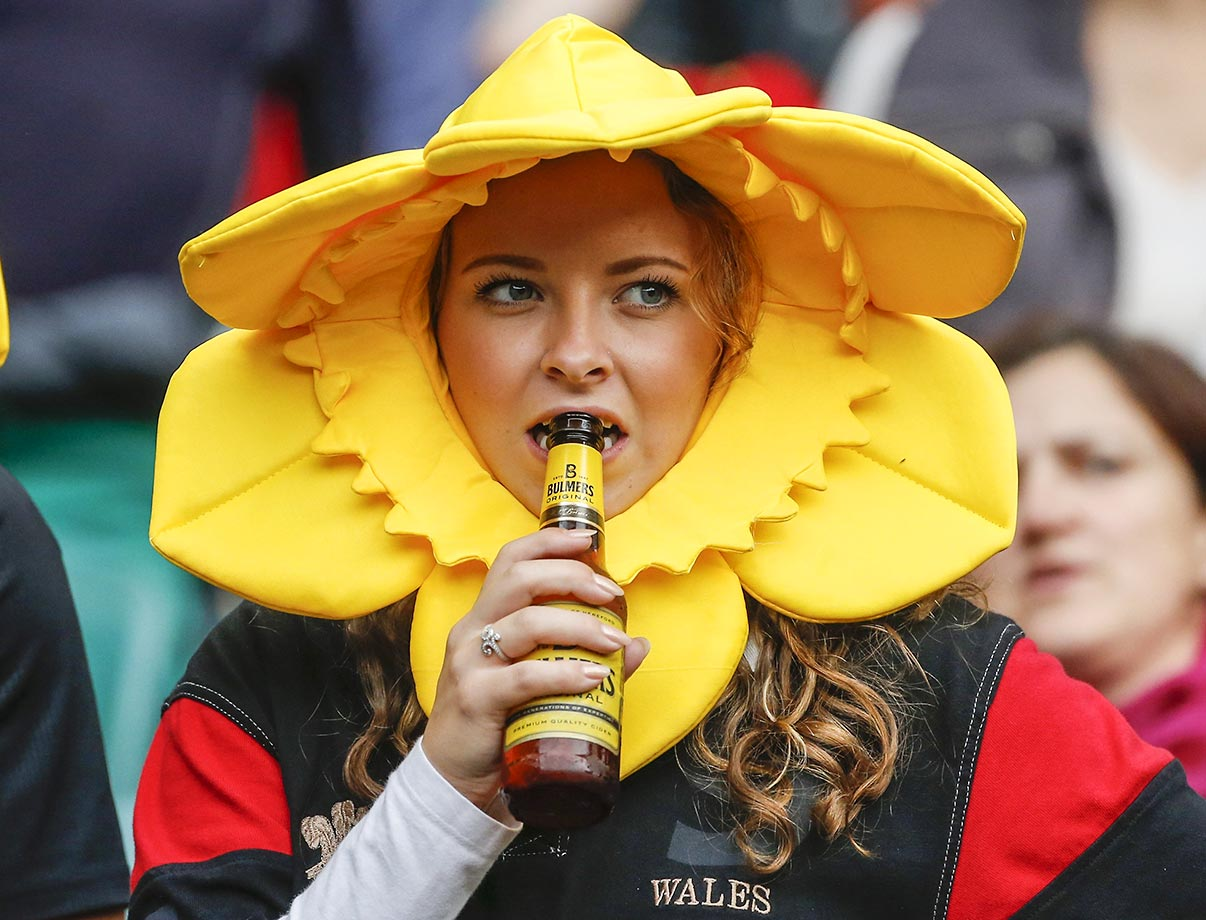 A fan at the World Cup Rugby match between Australia and Wales in London.