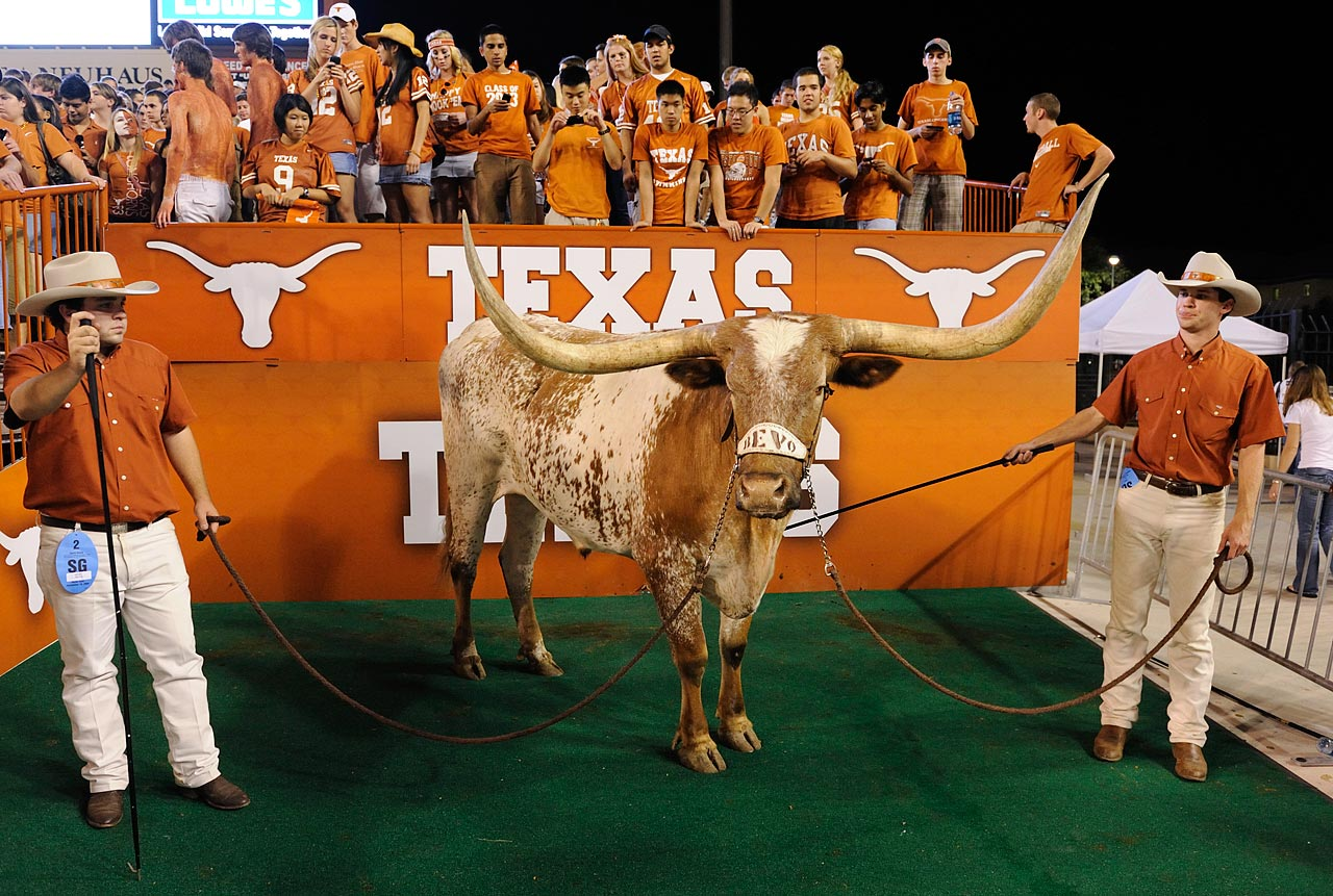 College students near a real-life steer. What could go wrong?