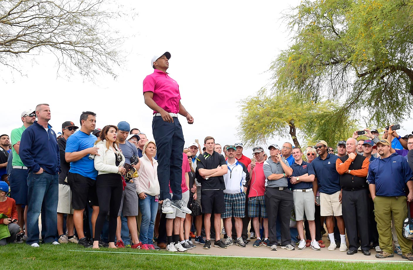 Tiger Woods, seemingly with super powers, is really just leaping up to see the eighth green during the first round of the Waste Management Phoenix Open.