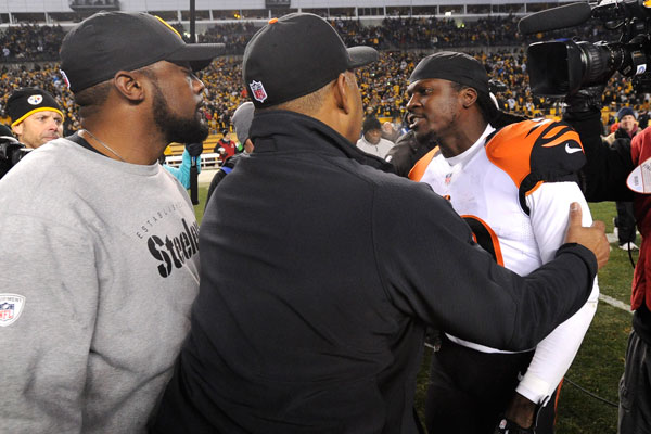 Mike Tomlin, Marvin Lewis and Reggie Nelson :: AP