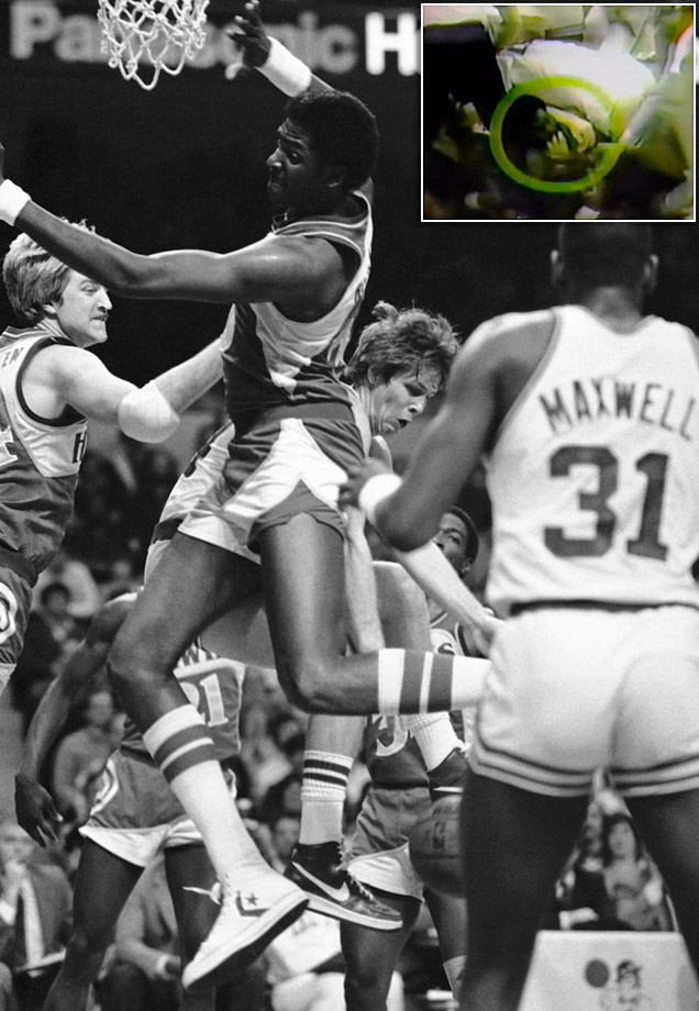 "During 1983 playoffs, Atlanta's Tree Rollins bit Boston's Danny Ainge during a brawl. The headline in the papers the next day famously read, ""Tree Bites Man."""