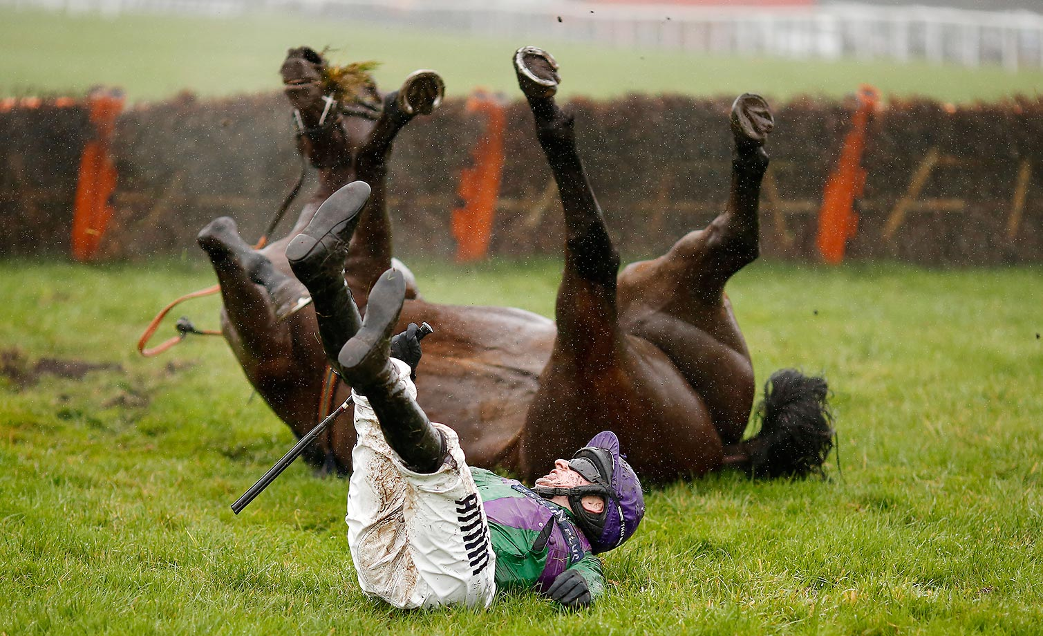 Tom O'Brien falls from Gala Ball at Exeter racecourse.