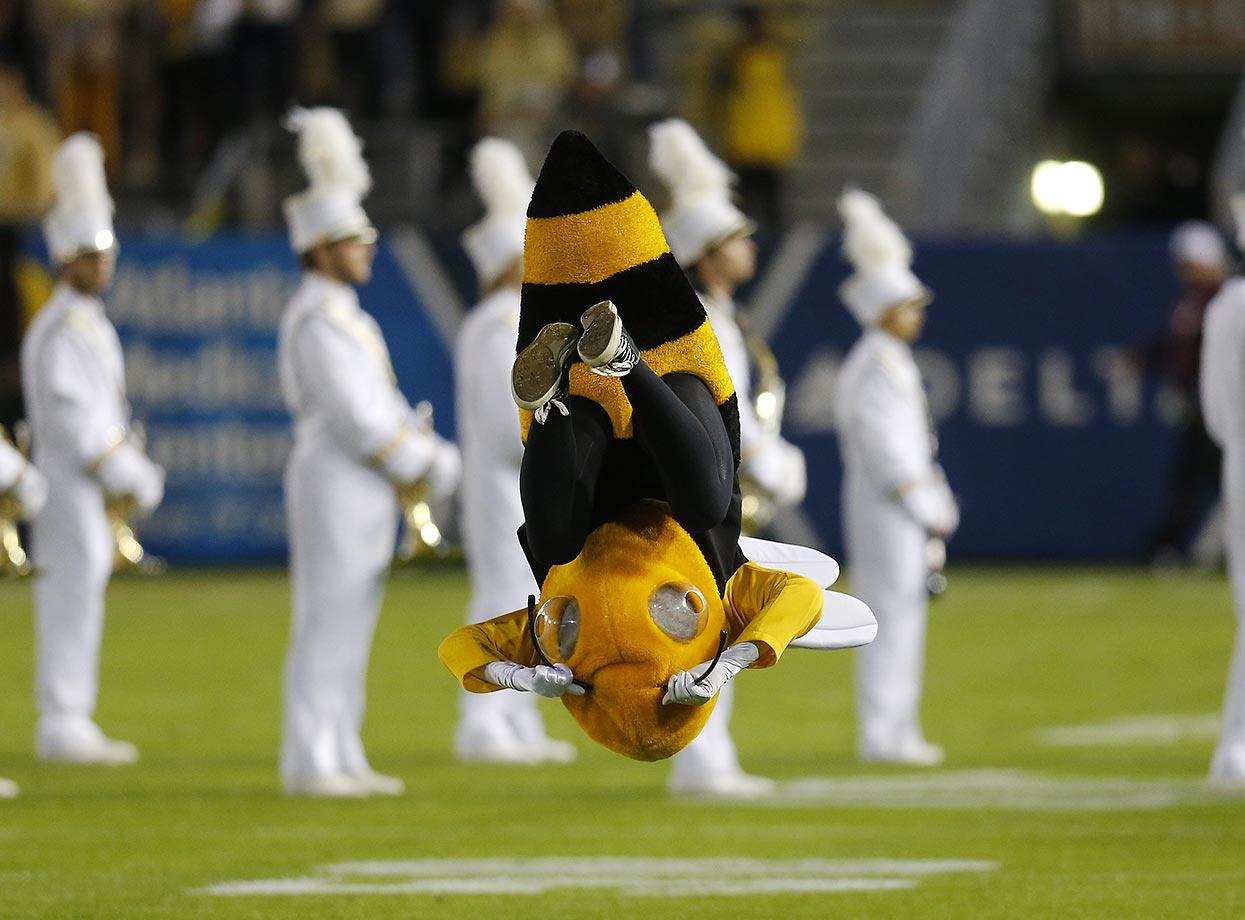 Buzz, the Georgia Tech mascot, entertains the crowd at a game against Virginia Tech.