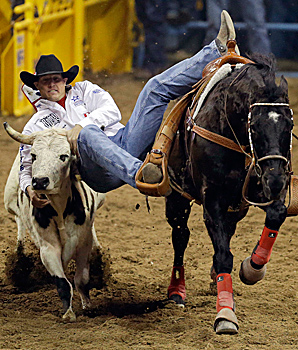 Trevor Knowles drops down off his horse while competing in the steer wrestling competition of the National Finals Rodeo.