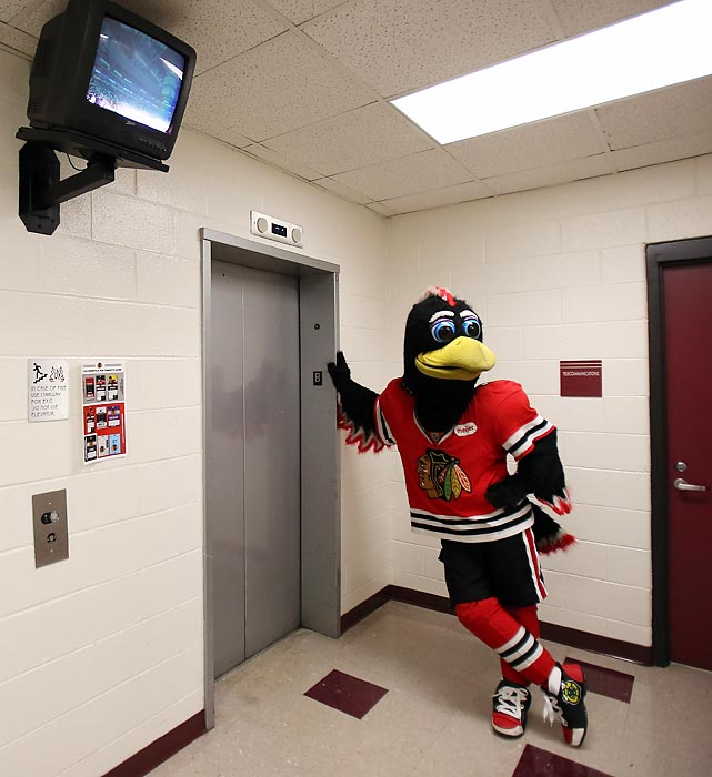 Going up: The Blackhawks and their mascot have been on quite a ride since the puck dropped on the lockout-shortened NHL season. Chicago started 7-0-2, good enough to lead the league with 16 points.