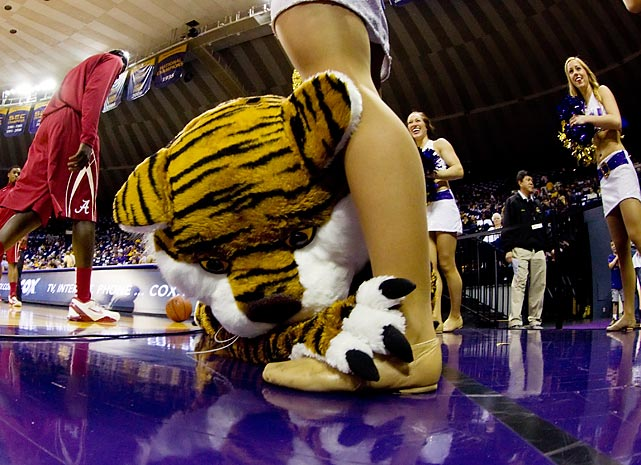 In one of the college hoops season's more touching moments, LSU's mascot threw himself at a Tiger Girl's feet and tearfully proposed marriage during a game against Alabama in Baton Rouge.