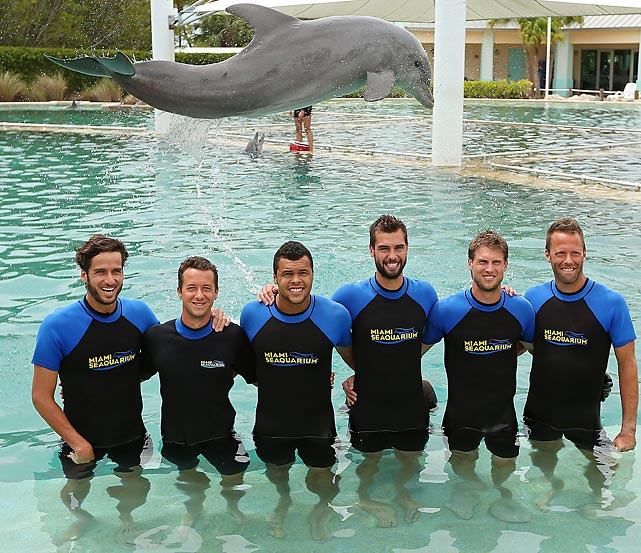This bit of NFL free agent news came in from Miami Seaquarium: The Dolphins were eyeing Feliciano Lopez, Milan Srejber, Jo-Wilfried Tsonga, Benoit Paire, and Niclas Lindstedtat. Just thought we'd pass it on...