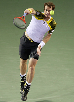 After defeating Richard Gasquet in three sets Friday at Key Biscayne, Fla., Andy Murray will face David Ferrer in the Sony Open men's final.