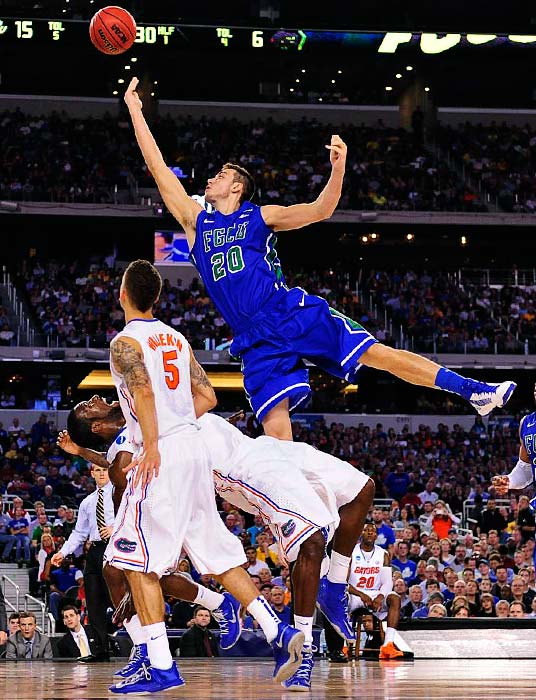 <bold>FGCU's Chase Fieler bowling over a Florida defender as he goes in for a layup. The Eagles lost their Sweet 16 game after capturing national attention with two stylish upset wins in the opening rounds as a 15 seed. </bold> <bold>Defeated Northwestern St. 79-47</bold> <bold>Defeated Minnesota 78-64</bold> <bold>Defeated FGCU 62-50</bold>