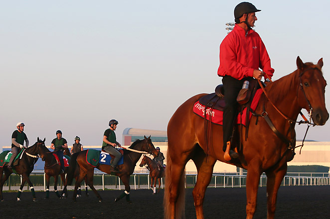 The UAE Derby is part of a nine-race World Cup card, with the total purse of $27.25 million.