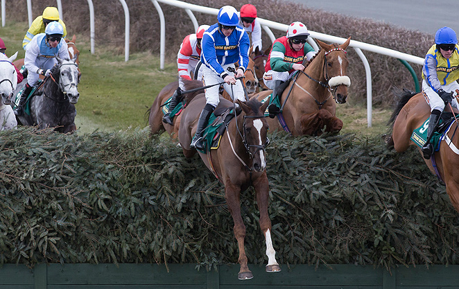 Little Josh (center), ridden by jockey Liam Treadwell, fell and fractured his shoulder during the Topham Steeplechase, forcing veterinarians to put him down.
