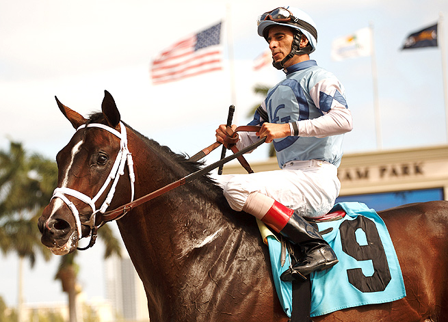 John Velazquez has chosen to ride Verrazano over Orb in the Kentucky Derby this year.