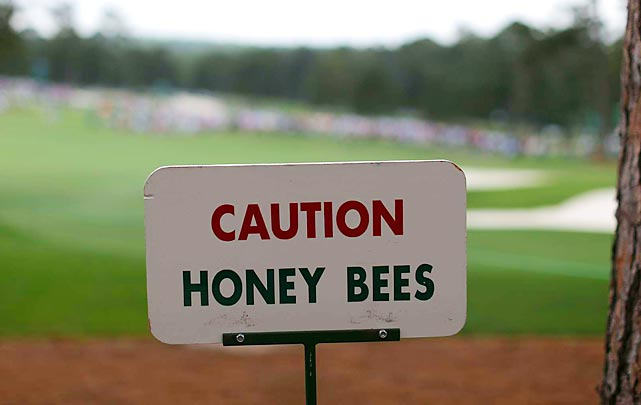 Why there's always a buzz about The Masters...