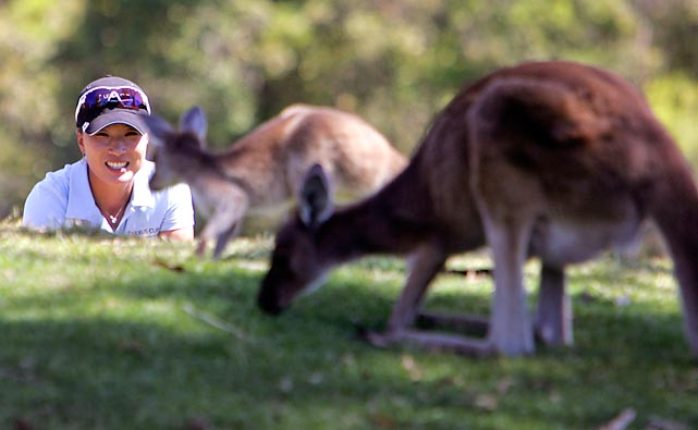 Team Asia captain Se Ri Pak, of South Korea, encounters some kangaroos near the lie of her ball during the Lexus Cup in Perth, western Australia.