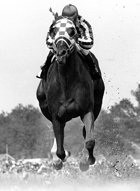 Secretariat ran each quarter mile of the race faster than the previous one.