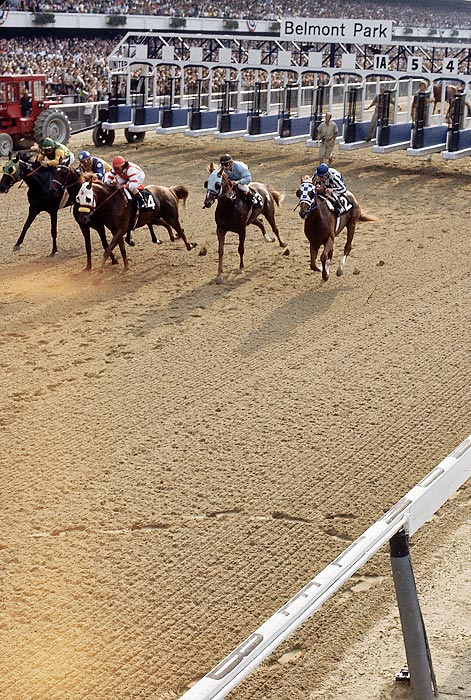 Secretariat competed against a field of four other horses in the Belmont, the final leg of the Triple Crown.