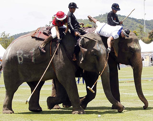 A total of 16 international teams and 51 Thai pachyderms are participating in the annual Kings Cup Tournament near Bangkok. The King Power Duty Free boys (right) bested CDD The Devil (red helmet, natch) 9-7 on opening day.