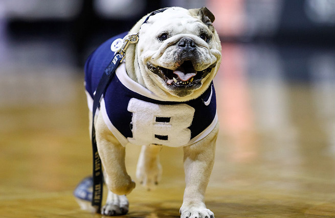 Blue appeared on the court for every Butler men's home game, select away games and the 2010 and 2011 Final Fours.
