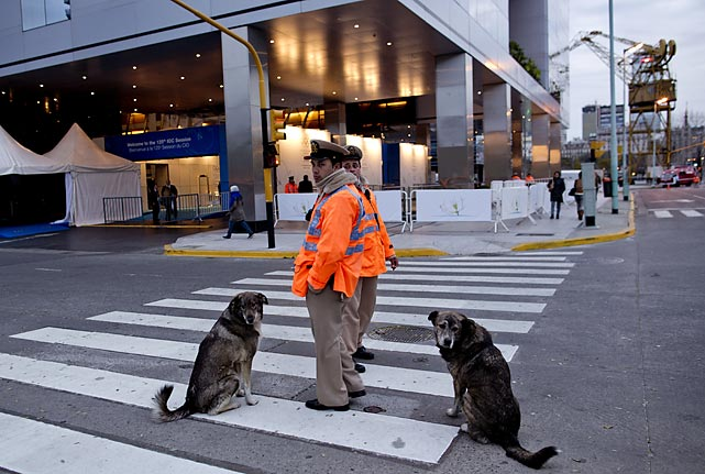 A pair of pooches dogged the grand gathering in Buenos Aires where the host city for the 2020 Summer Olympics and a new IOC president were the featured topics as well as adding a sport to the 2020 program.