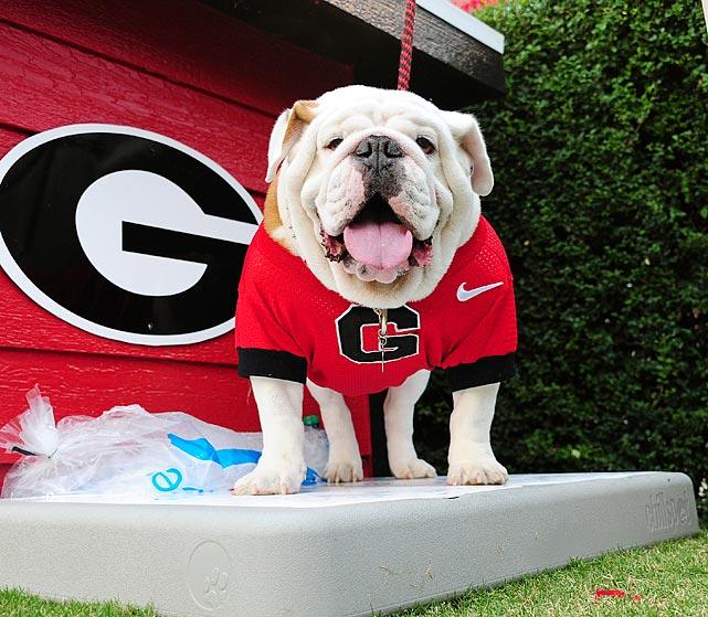 NCAA's Top Real Animal Mascots