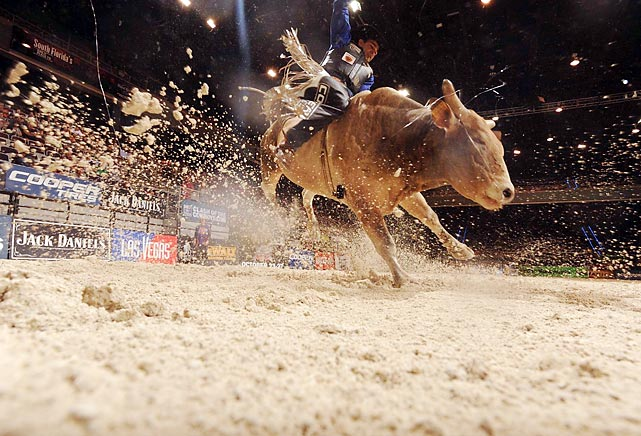 Special Edition kicks up some dust while trying to dislodge Joao Ricardo Vieira during the Professional Bull Riders Cooper Tires Invitational in Hollywood, Fla.