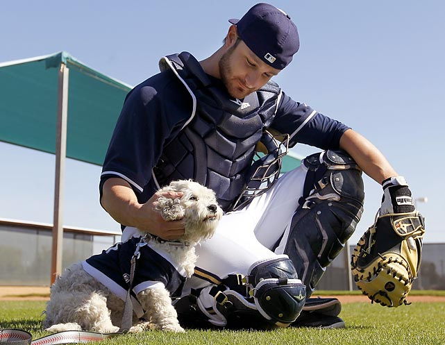 Catcher's mutt: The dog days of the baseball season arrived early in Arizona where the Milwaukee Brewers backstop is hanging out with Hank, a stray pooch who became the team's new spring training mascot.