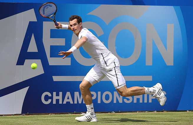Andy Murray hasn't lost a match on grass since losing the 2012 Wimbledon final to Roger Federer.