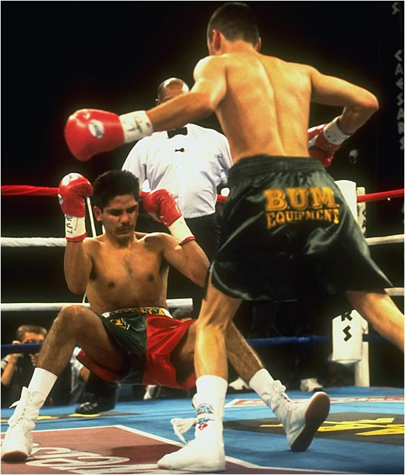 "Already the WBO lightweight champion, De La Hoya was gunning for the IBF version in only his 18th pro bout. The Mexican-born Ruelas, touted as a gritty challenger to the glitzy Golden Boy, promised an unrelenting attack. (Trainer Joe Goossen had said his fighter would be on De La Hoya like a ""soup sandwich."") De La Hoya dropped Ruelas twice in the second round, then battered him against the ropes until referee Richard Steele stopped the bout."