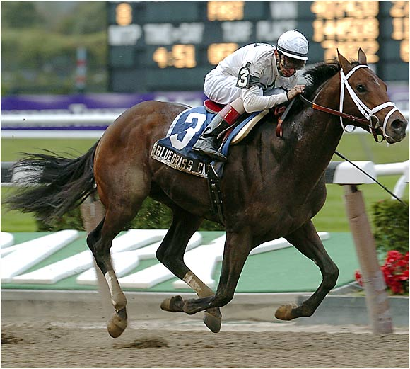 When this son of the mighty Storm Cat (stud fee: $500,000) reeled off four consecutive victories between late September and mid-February, he looked like the horse that would bring Todd Pletcher his first Derby victory. Then he lost to the mediocre Deputy Glitters in the Tampa Bay Derby and was outclassed in the Blue Grass. Now he looks like an expensive horse that will prolong Pletcher's frustration.