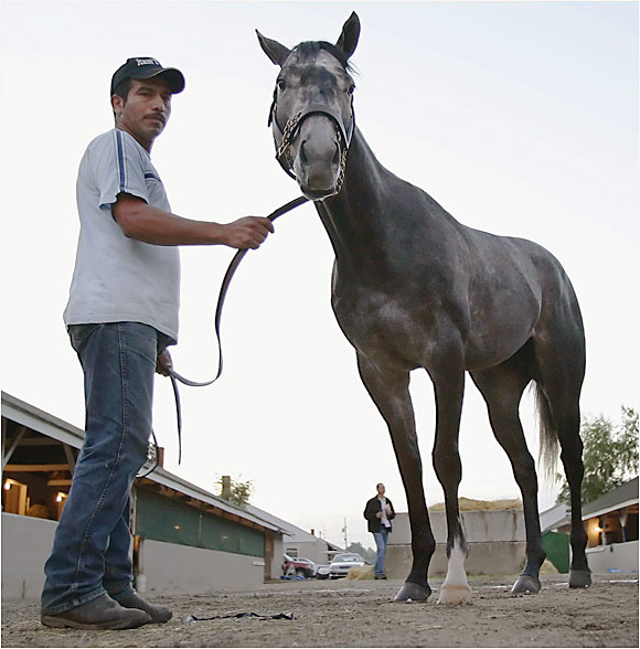 Trainer Jerry Hollendorfer's Northern California closer had a crowded bandwagon until he was trounced by Sweetnorthernsaint in the Illinois Derby. Before that, this $30,000 2-year-old purchase had finished first or second in all nine lifetime starts. His jockey, Russell Baze, has more than 9,200 career victories, second only to Laffit Pincay Jr. in racing history.