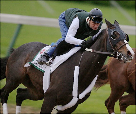 """Wins the honor as the most talked-about """"wiseguy'' horse in the field. Under trainer Michael Trombetta, 39, making his first Derby start, Sweetnorthernsaint's dominant 91/2-length victory in the Illinois Derby four weeks ago was one of the most impressive Derby preps. Sweet is the only gelding in the Derby field; original trainer Leo Azpurua, Sr. decided to cut him after he ran wild prior to this career first start last August at Colonial Downs in Virginia."""
