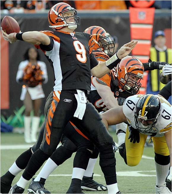 Carson Palmer had a 101.1 passer rating in 2005 and led Cincinnati to an AFC Central crown. He entered the AFC divisional playoffs against Pittsburgh with high hopes of beating his divisional rival and taking the Bengals to the Super Bowl.