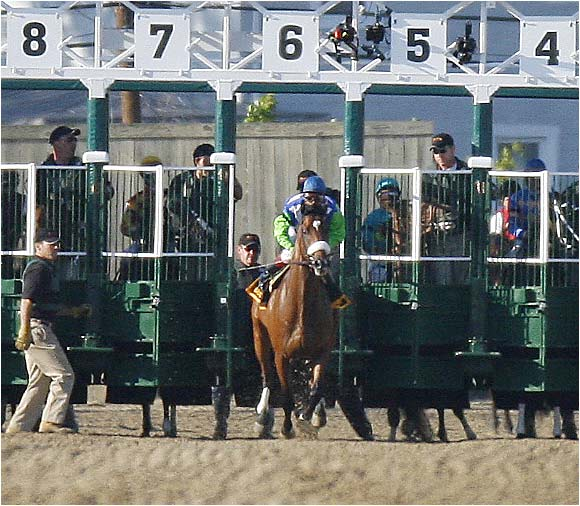 Barbaro gets loose during a false start, breaking from the gate.