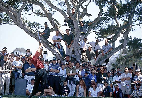 By the 2000 U.S. Open at Pebble Beach, Woods was so popular that PGA events attracted crowds like never before. As Tiger launches a tee shot on the 13th hole during the final round, fans take a seat in the trees to catch a glimpse at the prodigy.