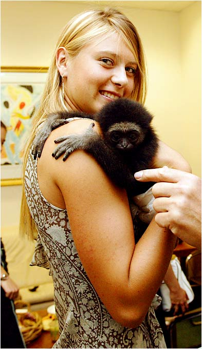 "Maria cuddles up to a simian friend backstage at ""Live with Regis and Kelly."""