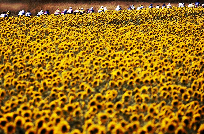 "Frakes' take: <br><br> ""In addition to being one of the world's great athletic competitions, the Tour de France is just that -- a tour of France. Here the peleton rolls through Provence. I stepped back and let the countryside appear to dominate the image, but at the same time showing the long road.""<br><br> Shot with Canon EOS 1D"