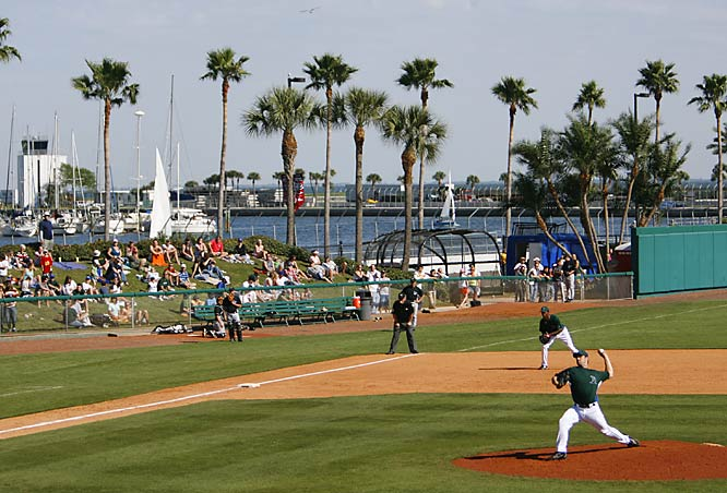 Fans enjoy the scenery in St. Petersberg while watching the Devil Rays play the Blue Jays on March 4.