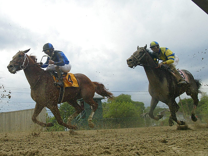 Both Curlin (4) and Street Sense were back in the pack early in the race before making their moves late.