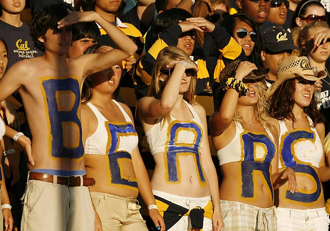 Let's hope these Golden Bears brought their suntan lotion.
