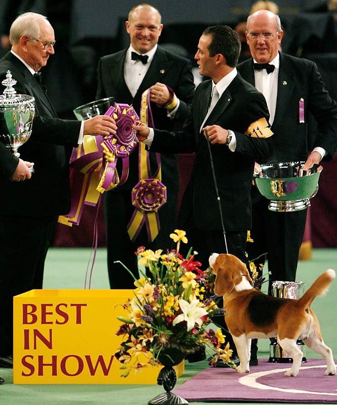 Uno looks on while his handler, Aaron Wilkerson, second from right, accepts a ribbon for Best in Show